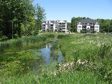 Le plan de gestion des cours d'eau et le bassin de rétention du parc Schulz